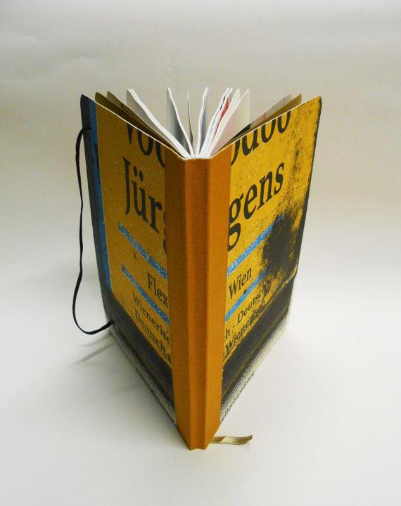 WEB-Book-VOODOO-detail1